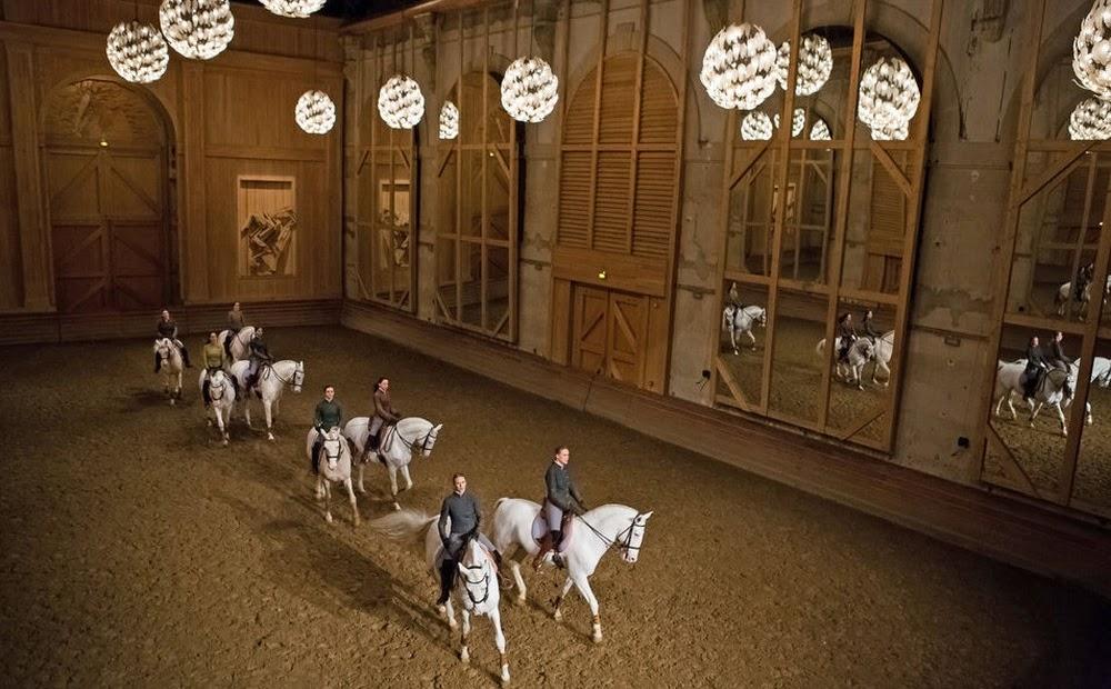Bartabas-Miroir-equestre-miroir-de-manege-miroir-long-format-arene-Like-Mirror-mirolege-plafond-miroir-tendu
