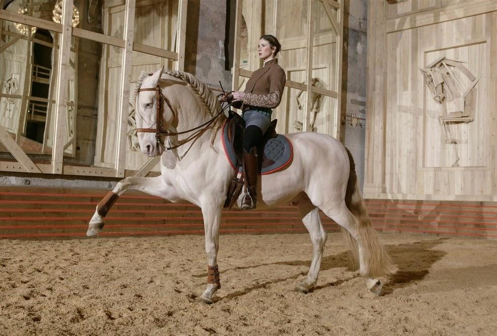 Miroir-equestre-versailles-cyrilleweiner_academie-equestre_like-mirror-mirolege